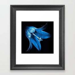 Bell Flower. Framed Art Print