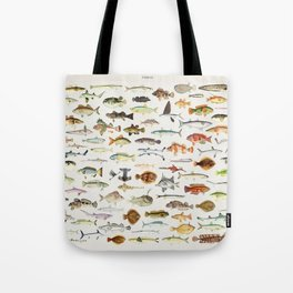 Illustrated Colorful Southern Pacific Exotic Game Fish Identification Chart Tote Bag