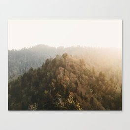 Chimney Point Canvas Print