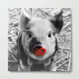 BW splash sweet piglet Metal Print