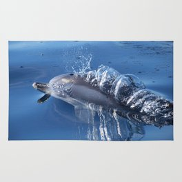 Dolphins and bubbles Rug
