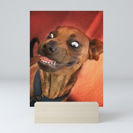 "I have a ""God-Given Right"" to bear teeth. 3 Mini Art Print"