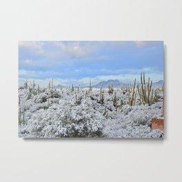 Snow in the Desert Metal Print