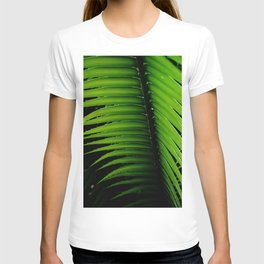 Palm tree leaf - tropical decor T-shirt