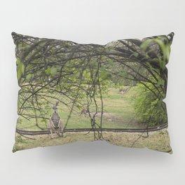 Roo through the Trees Pillow Sham