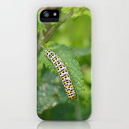 Mullein Caterpillar iPhone Case