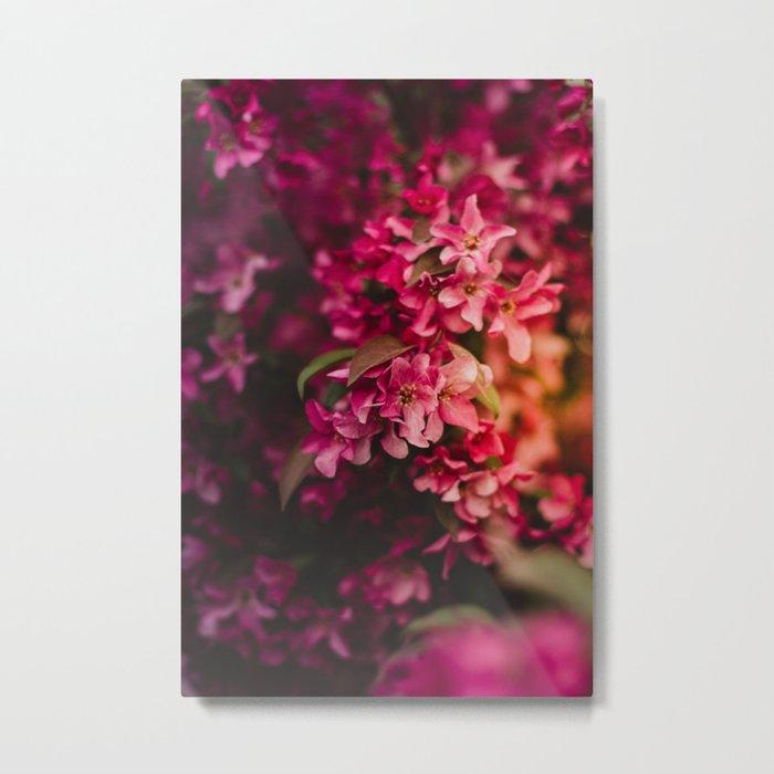 Beauty of Spring I Metal Print
