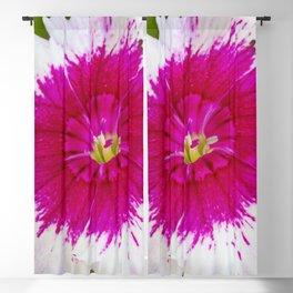 Garden Flora Blackout Curtain