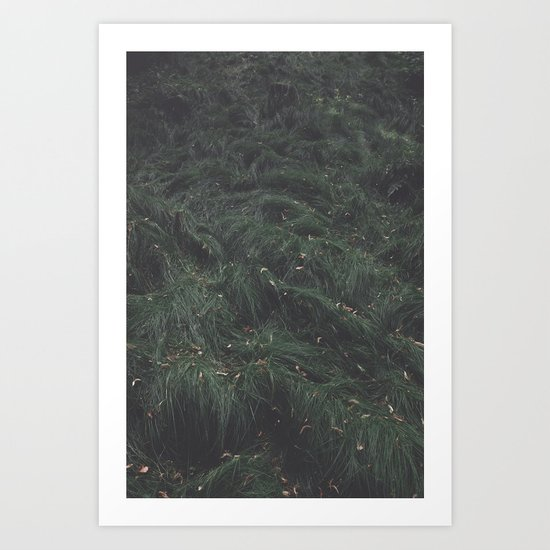 Leave(s) - Nature Photography Art Print