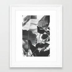 Black and White Banana Leaf Framed Art Print