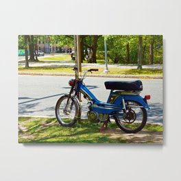 Bicycle Blue in the Green  Metal Print