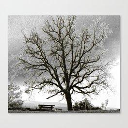 L'arbre de Gourdon Canvas Print