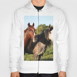 Two Horses Standing Grass Field On Hoody