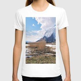 the big grimming T-shirt