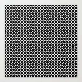 flowing curves Canvas Print