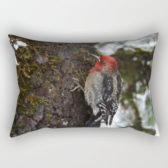 Red-Breasted Sapsucker in Christmas Snow Rectangular Pillow