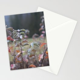 Early morning dew Stationery Cards