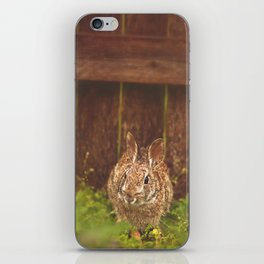 Easter bunny iPhone Skin