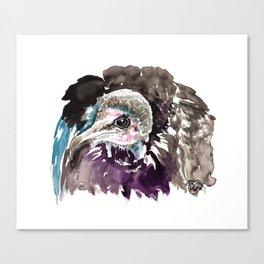 Misunderstood Vulture Canvas Print