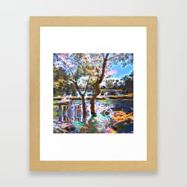 Trees Pond and Light Streams Framed Art Print