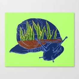 Snail Terrarium 2 Canvas Print