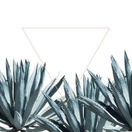Notebook - Agave Triangle - Glitch
