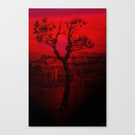 Red Chasm Canvas Print