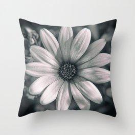 Flower Close Up Throw Pillow