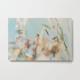 sweet sweet days of summer amongst the wild flowers ... Metal Print