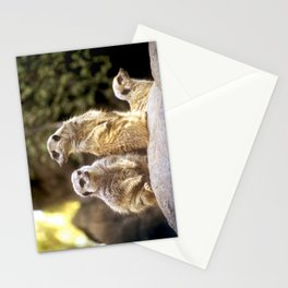 Act Natural Meerkats Stationery Cards