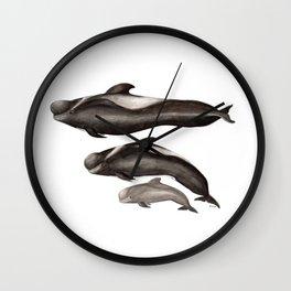 Short-finned pilot whale (Globicephala macrorhynchus) Wall Clock