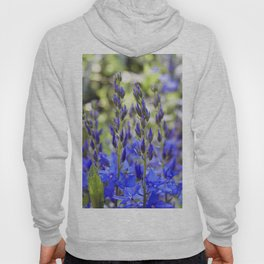 Starry Blue Hoody