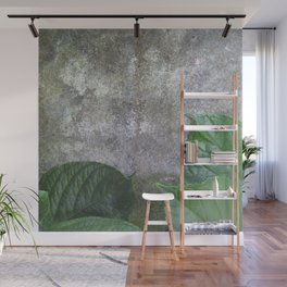 Urban Plant hydrangea leaves on concrete wall Wall Mural