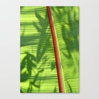 banana leaf Canvas Prints featuring Banana Leaf by Michael Elliott