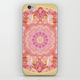 Mandalas for a New Earth 9 iPhone Skin