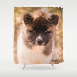 Cute American Akita Puppy #decor #society6 #buyart Shower Curtain