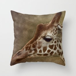Its all in a Glance Throw Pillow