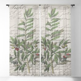 Chic paris scripts kitchen artwork french botanical leaf olive Sheer Curtain