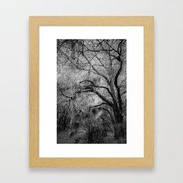 Eerie Woods Framed Art Print