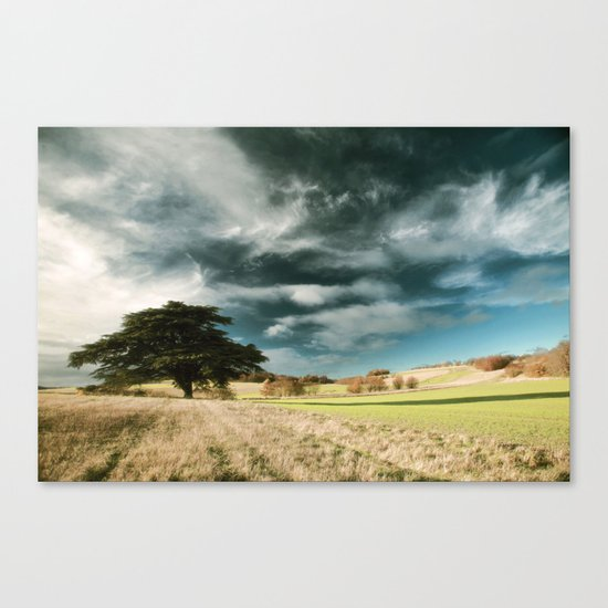 Leading Lines Canvas Print