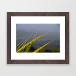 ll Framed Art Print