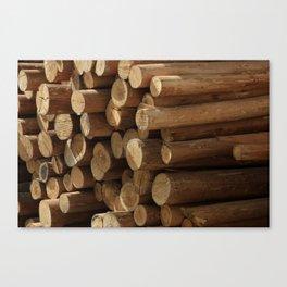Logs in Cotacachi Canvas Print