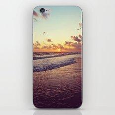 Sunset at Sanibel iPhone & iPod Skin