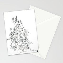 windy day phlox Stationery Cards