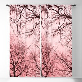 Naked trees tops, pink sky Blackout Curtain