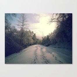 Snowy Road Canvas Print
