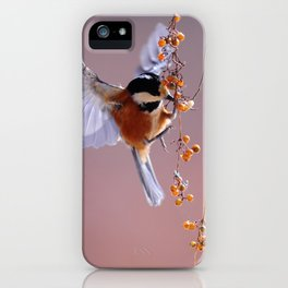 Hovering Bird iPhone Case