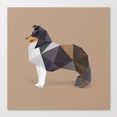 Collie Dog. Canvas Print