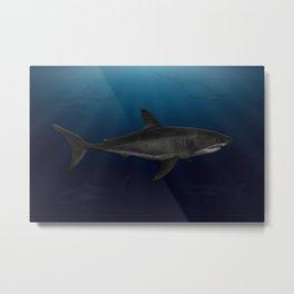 Great White Shark - Cruising. Metal Print