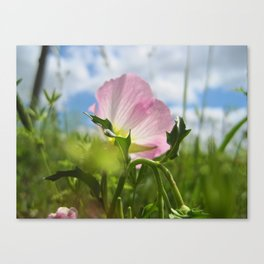Can't Remember the Last Time I Breathed Canvas Print